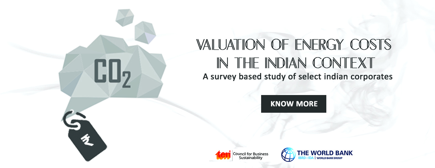 Valuation of Energy Costs in the Indian Context